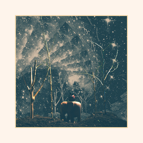 Nick Hakim Cold artwork