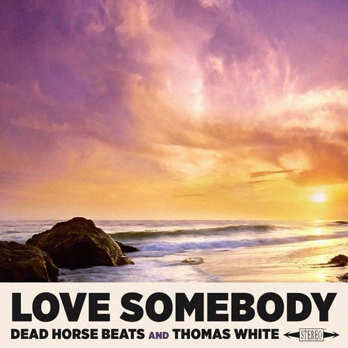 Dead Horse Beats & Thomas White - Love Somebody artwork