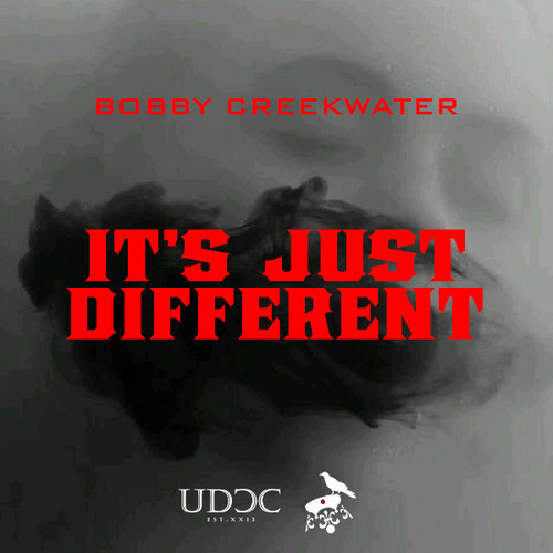 Bobby Creekwater It's Just Different artworks
