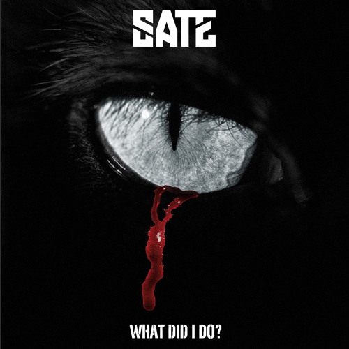 SATE - What Did I Do artwork