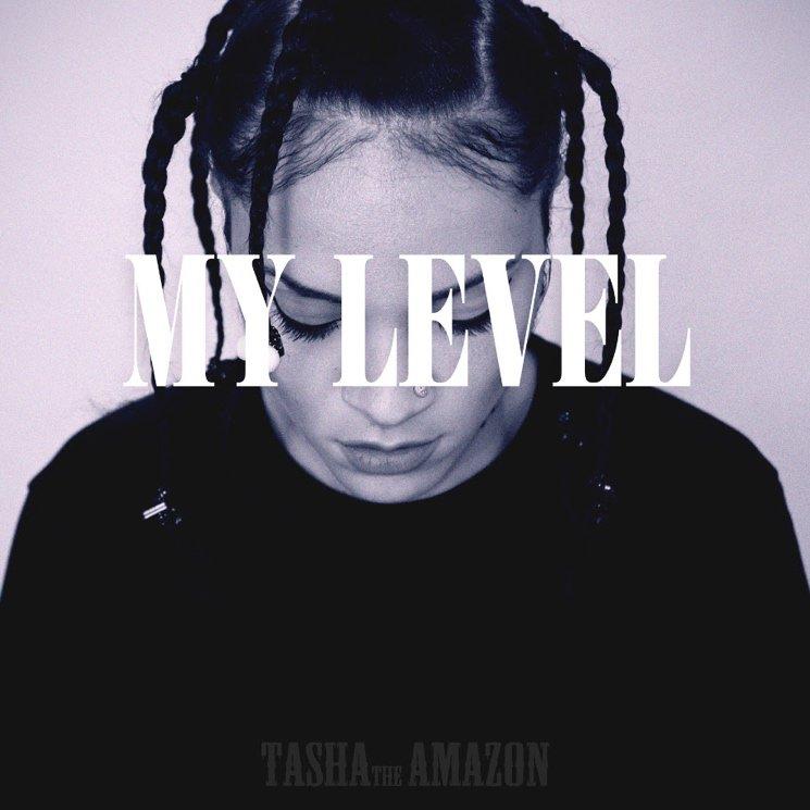 tasha the amazon - my level